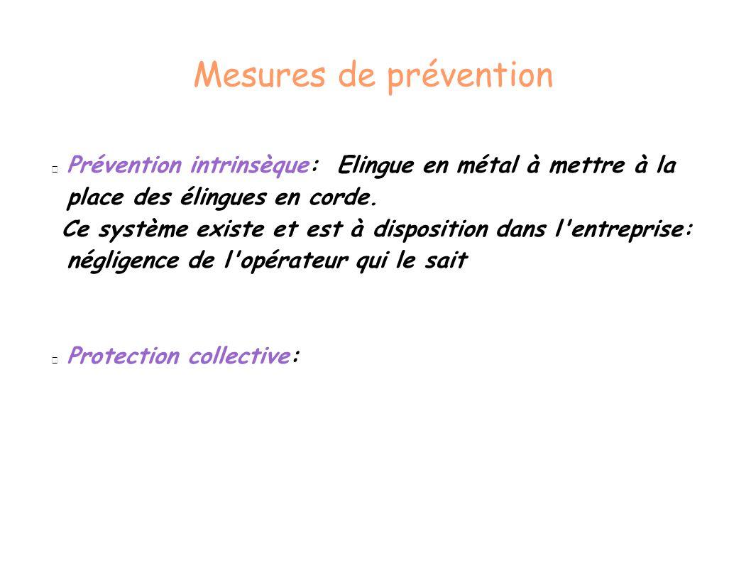 Mesures de prévention Prévention intrinsèque: Elingue en métal à mettre à la place des élingues en corde. Ce système existe et est à disposition dans