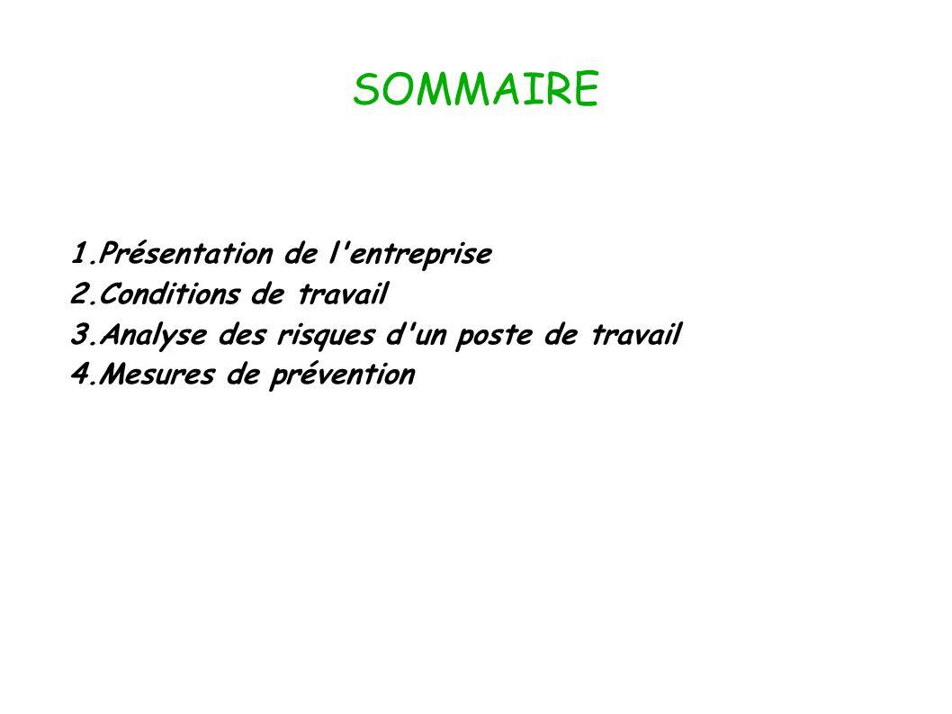 SOMMAIRE 1.Présentation de l'entreprise 2.Conditions de travail 3.Analyse des risques d'un poste de travail 4.Mesures de prévention