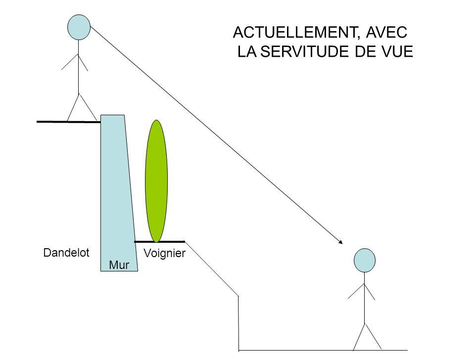 ACTUELLEMENT, AVEC LA SERVITUDE DE VUE Voignier Dandelot Mur