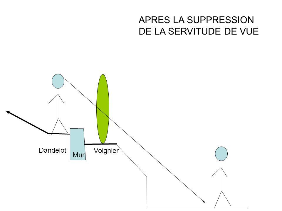 APRES LA SUPPRESSION DE LA SERVITUDE DE VUE Voignier Dandelot Mur