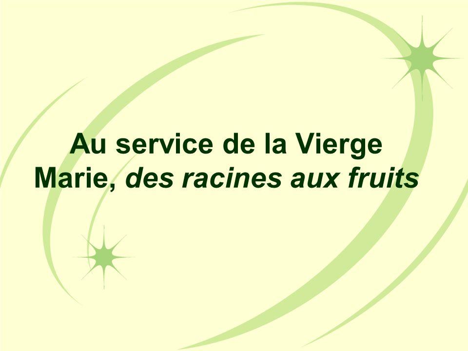 Au service de la Vierge Marie, des racines aux fruits