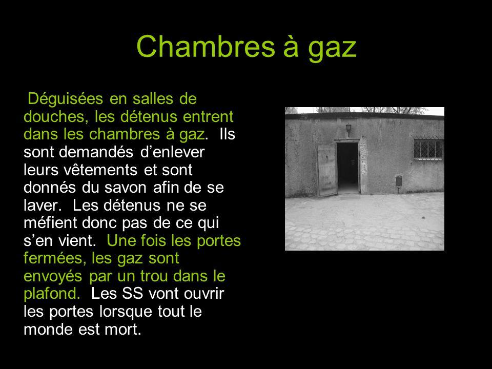 Chambres à gaz Déguisées en salles de douches, les détenus entrent dans les chambres à gaz.