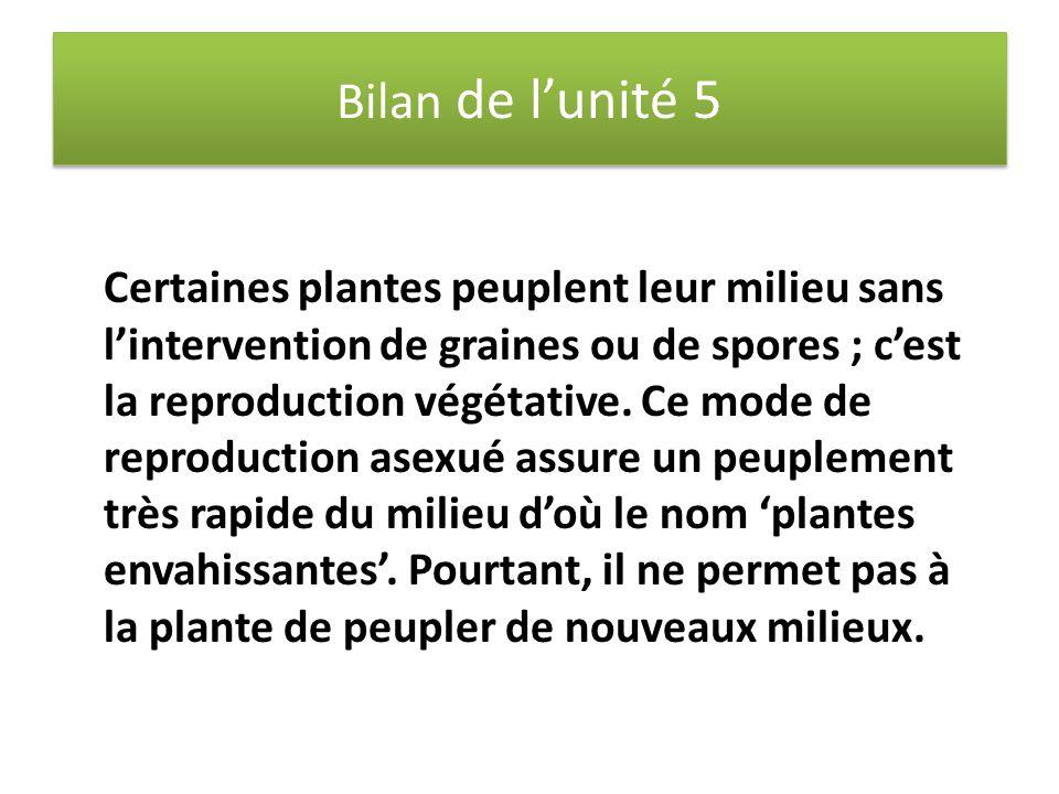 Bilan de l'unité 5 Certaines plantes peuplent leur milieu sans l'intervention de graines ou de spores ; c'est la reproduction végétative. Ce mode de r