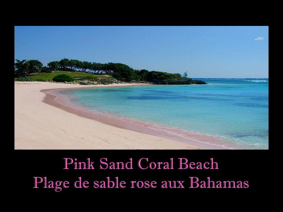 """""""Des plages avec sable doré"""" sont souvent associées au Paradis Terrestre. Mais tout comme il y a des paysages variés, il y a des plages pour tous les"""