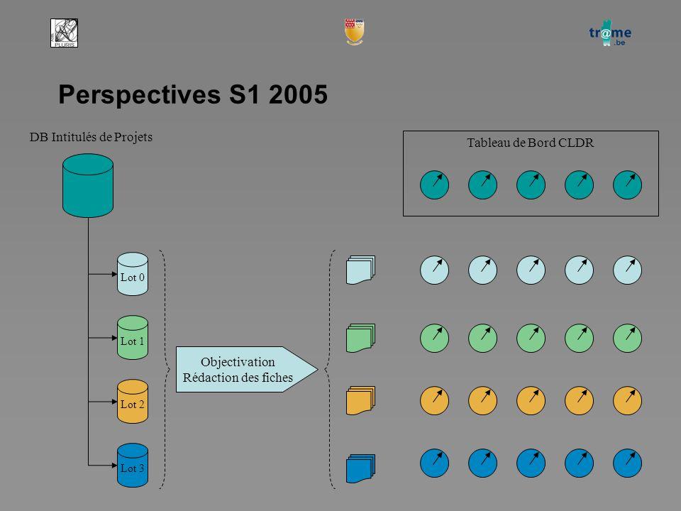Perspectives S1 2005 DB Intitulés de Projets Lot 0 Lot 1 Lot 2 Lot 3 Objectivation Rédaction des fiches Tableau de Bord CLDR