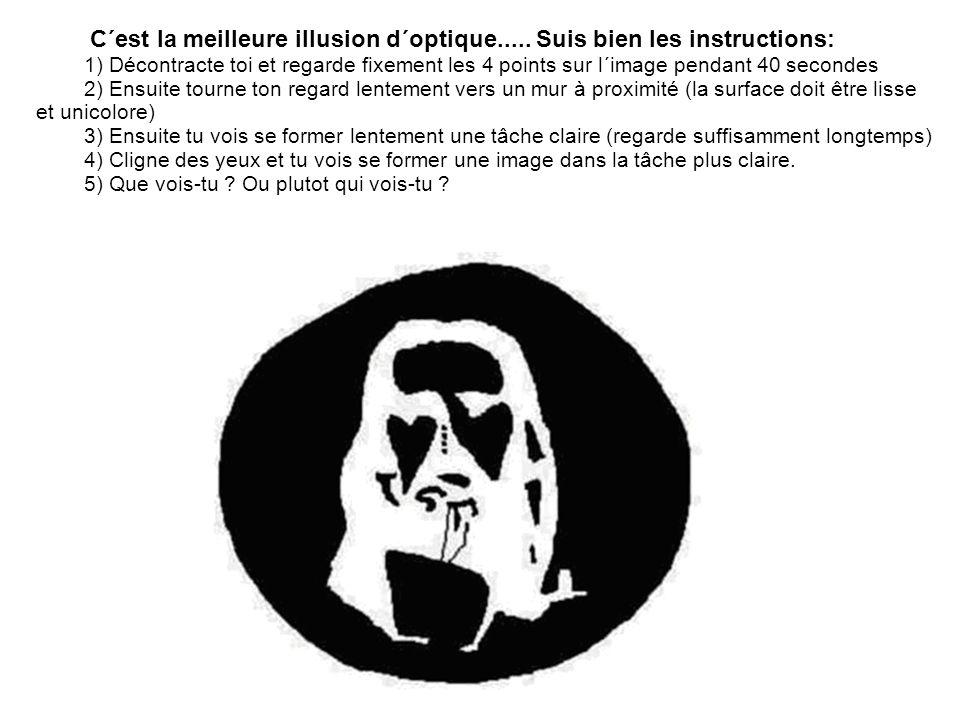 C´est la meilleure illusion d´optique..... Suis bien les instructions: 1) Décontracte toi et regarde fixement les 4 points sur l´image pendant 40 seco