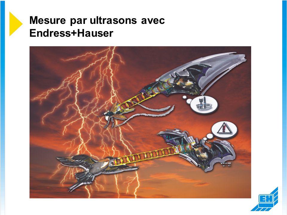 Mesure par ultrasons avec Endress+Hauser