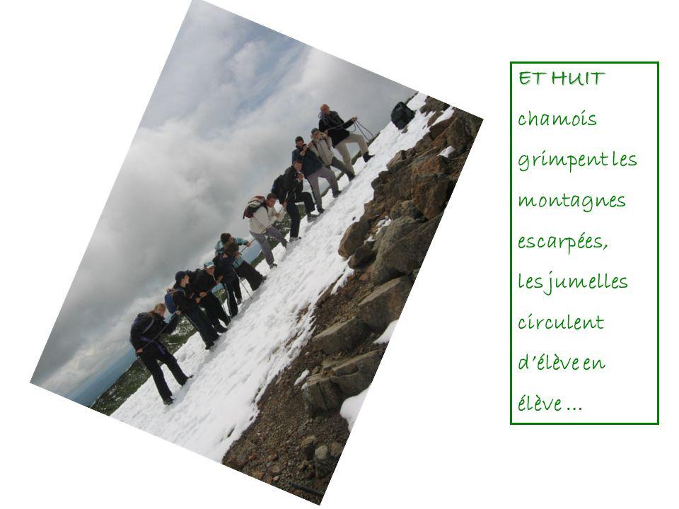 ET HUIT chamois grimpent les montagnes escarpées, les jumelles circulent d'élève en élève …