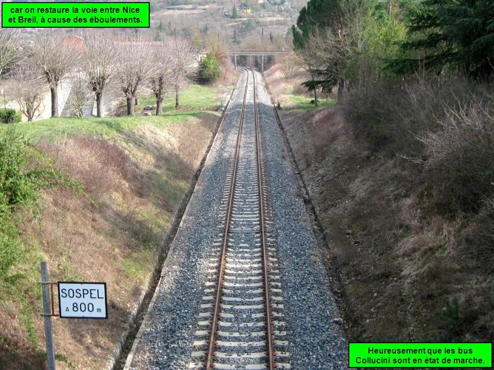 Mais il doivent faire un détour dans Menton à cause des restaurations de la route de Sospel .