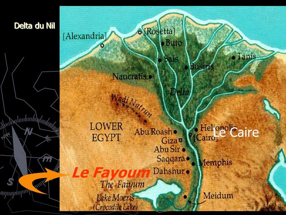 Delta du Nil Le Fayoum Le Caire