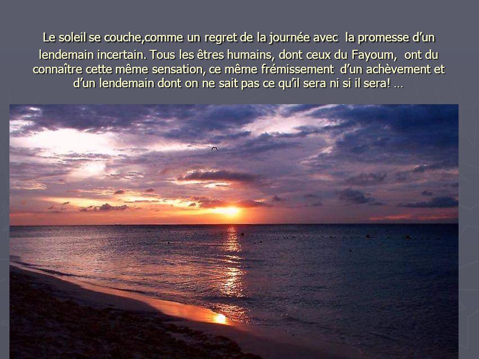 Le soleil se couche,comme un regret de la journée avec la promesse d'un lendemain incertain. Tous les êtres humains, dont ceux du Fayoum, ont du conna