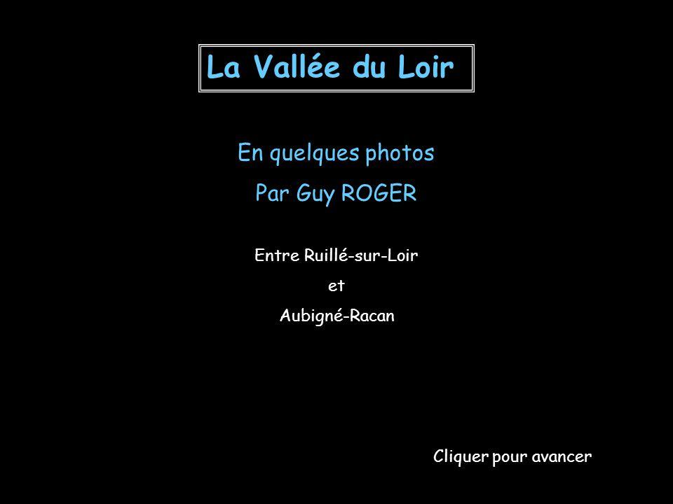 Luceau