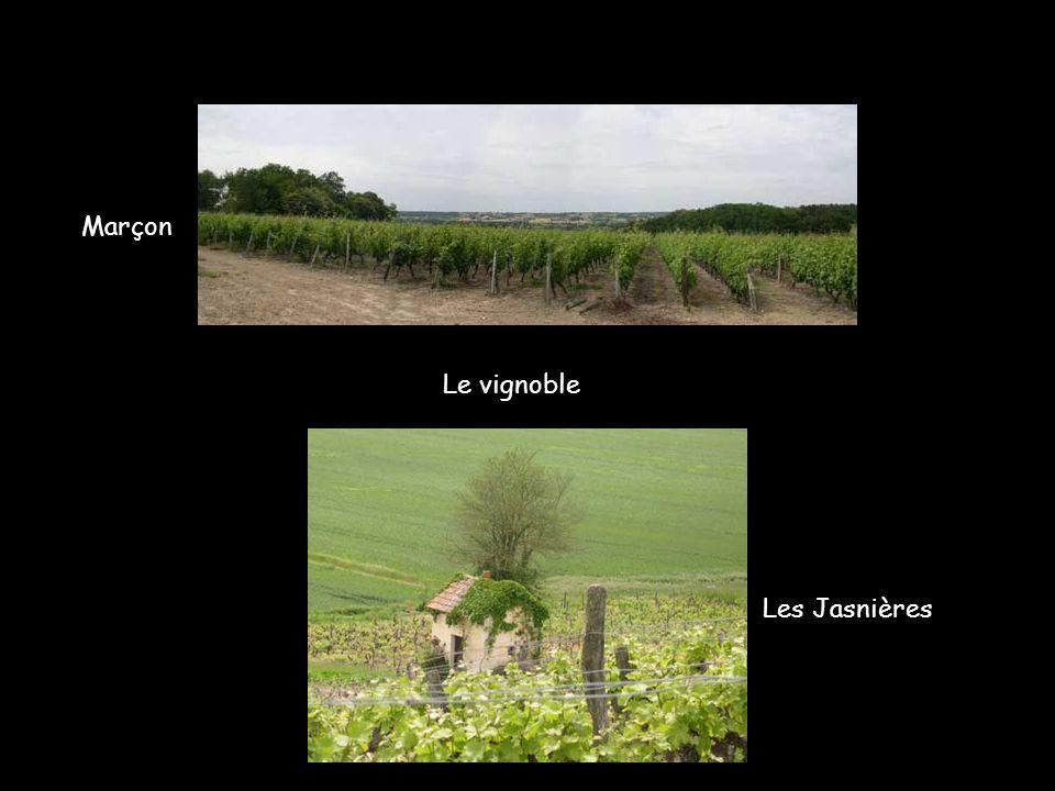 Le Loir à Vouvray-sur-Loir