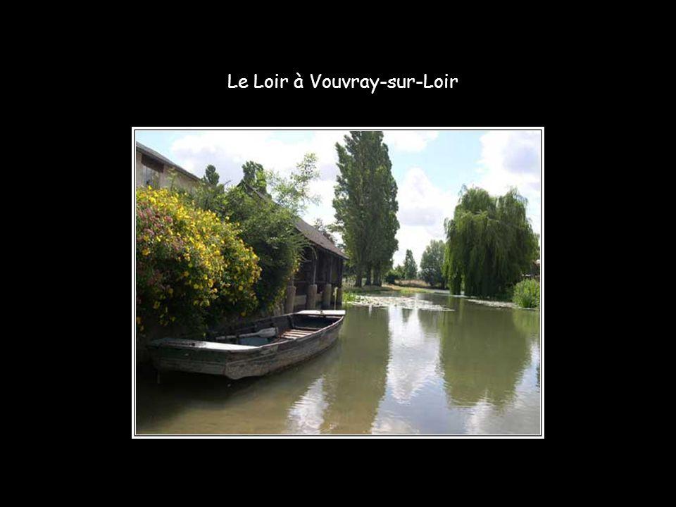 Entre Marçon et la Chartre-sur-Loir