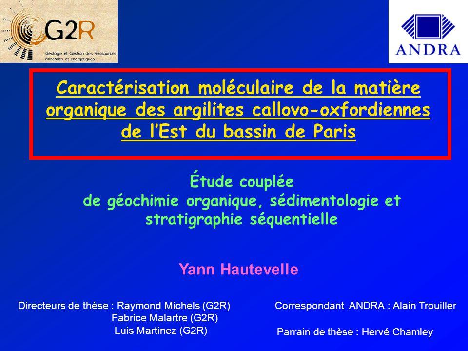 Yann HAUTEVELLE G2R Journée des doctorants ANDRA 2004 CONCLUSIONS ET PERSPECTIVES L'étude de la composition moléculaire de la matière organique des argilites callovo-oxfordiennes montre : — préservation des marqueurs de la diagenèse précoce — un éventuel changement de paléovégétation à l'Oxfordien inférieur synchrone avec l'apparition des premiers bancs carbonatés qui annoncent l'installation de la plate-forme oxfordienne.