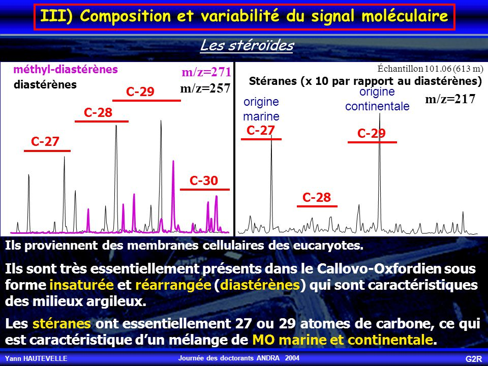 Yann HAUTEVELLE G2R Journée des doctorants ANDRA 2004 méthyl-diastérènes diastérènes C-27 C-28 C-29 C-30 Stéranes (x 10 par rapport au diastérènes) C-