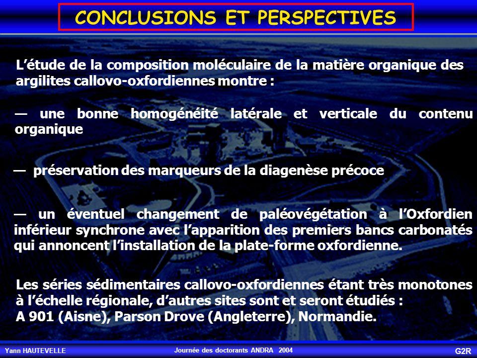 Yann HAUTEVELLE G2R Journée des doctorants ANDRA 2004 CONCLUSIONS ET PERSPECTIVES L'étude de la composition moléculaire de la matière organique des ar