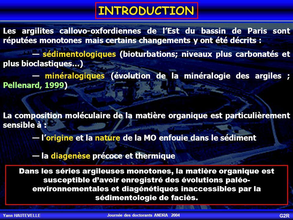 Yann HAUTEVELLE G2R Journée des doctorants ANDRA 2004 n-alcanes légers (<C24): contribution marine n-alcanes lourds (C>24): contribution continentale Pr Ph 17 13 18 19 20 21 23 24 25 26 27 28 29 30 31 32 33 34 22 Les n-alcanes Les calculs du CPI ( n-C 24 + / impairs/n-C 24 + pairs) montrent des valeurs comprises entre 1,5 et 3, ce qui prouve l'origine essentiellement terrestre des n-C 24 +.