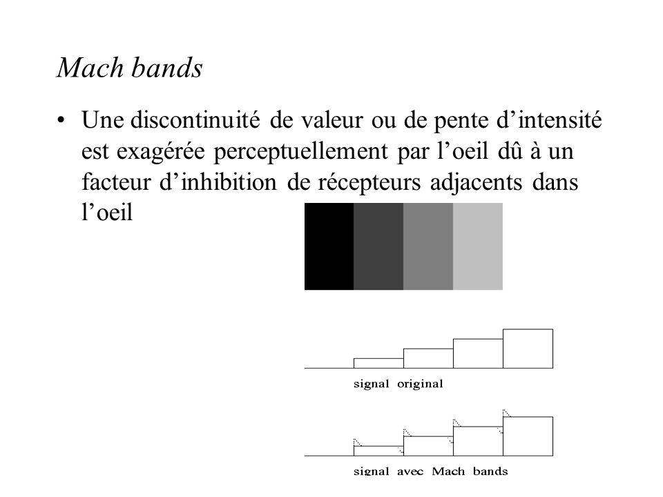 Mach bands •Une discontinuité de valeur ou de pente d'intensité est exagérée perceptuellement par l'oeil dû à un facteur d'inhibition de récepteurs ad