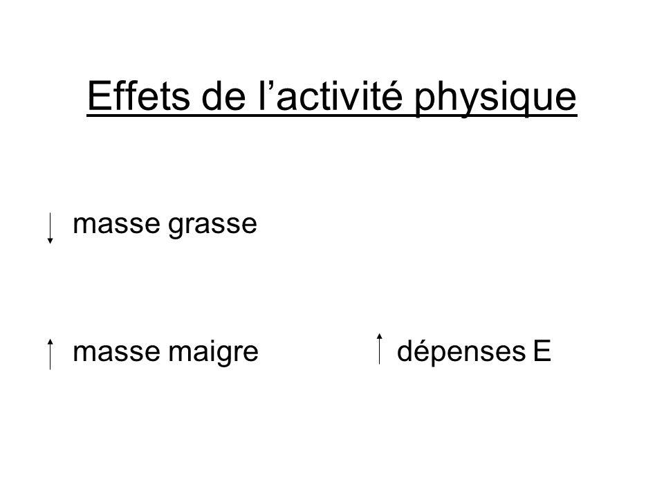 Effets de l'activité physique masse grasse masse maigre dépenses E