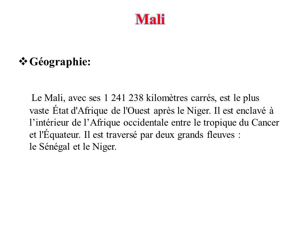  Géographie: Le Mali, avec ses 1 241 238 kilomètres carrés, est le plus vaste État d'Afrique de l'Ouest après le Niger. Il est enclavé à l'intérieur