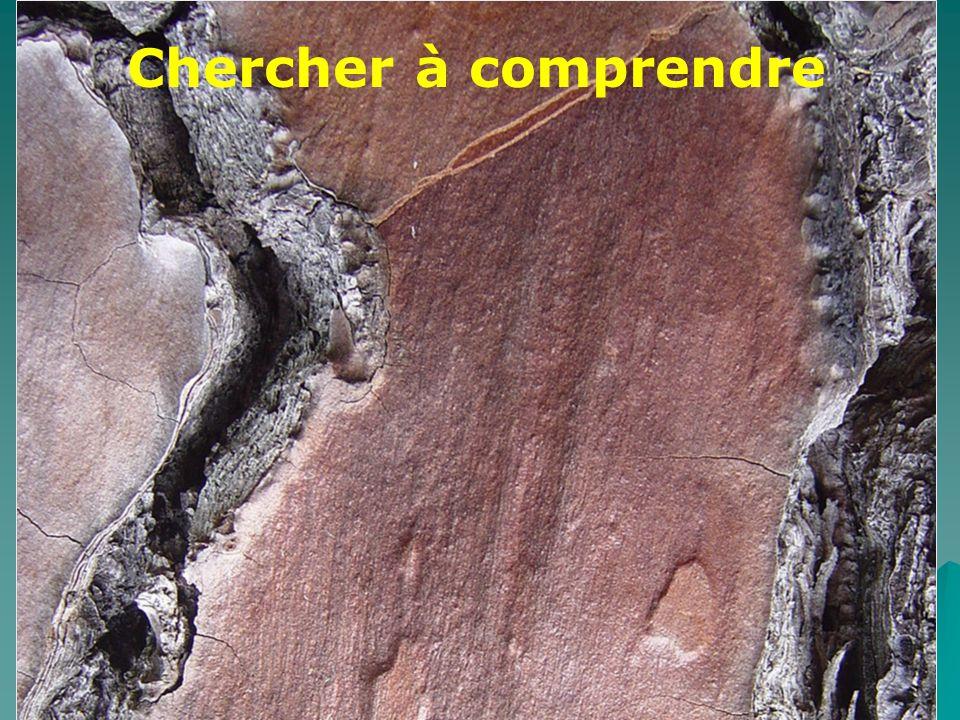 Accueil néos-titulaires EPS Académie d Orléans-Tours octobre 2005 10 Chercher à comprendre