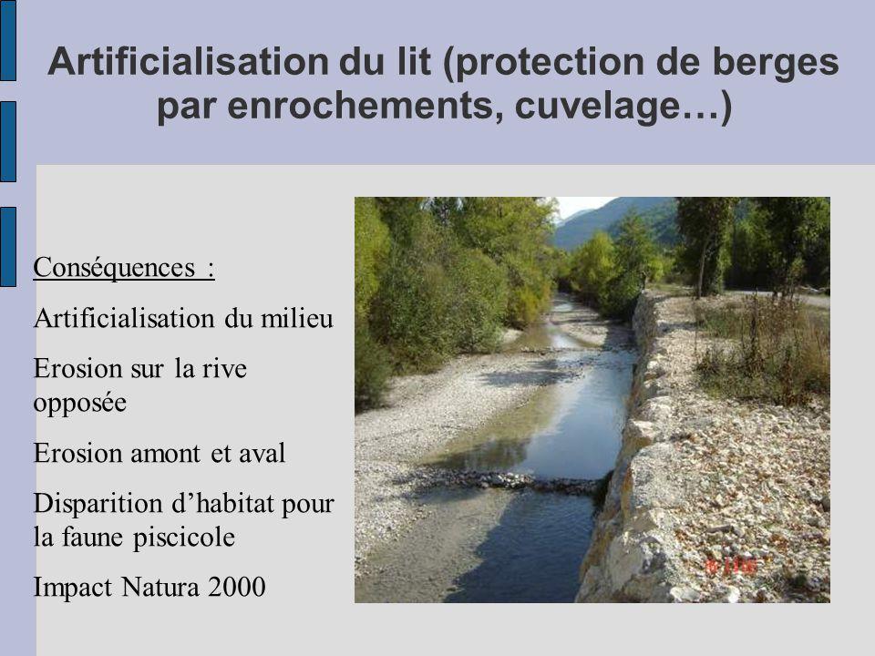 Artificialisation du lit (protection de berges par enrochements, cuvelage…) Conséquences : Artificialisation du milieu Erosion sur la rive opposée Erosion amont et aval Disparition d'habitat pour la faune piscicole Impact Natura 2000