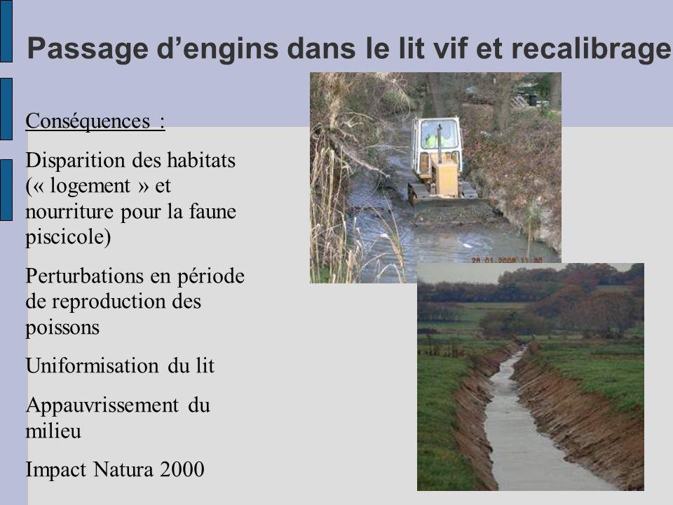 Passage d'engins dans le lit vif et recalibrage Conséquences : Disparition des habitats (« logement » et nourriture pour la faune piscicole) Perturbations en période de reproduction des poissons Uniformisation du lit Appauvrissement du milieu Impact Natura 2000