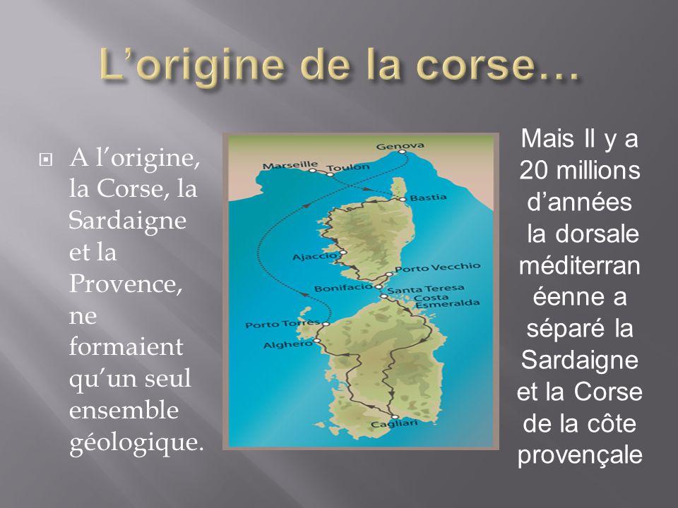 AA l'origine, la Corse, la Sardaigne et la Provence, ne formaient qu'un seul ensemble géologique.