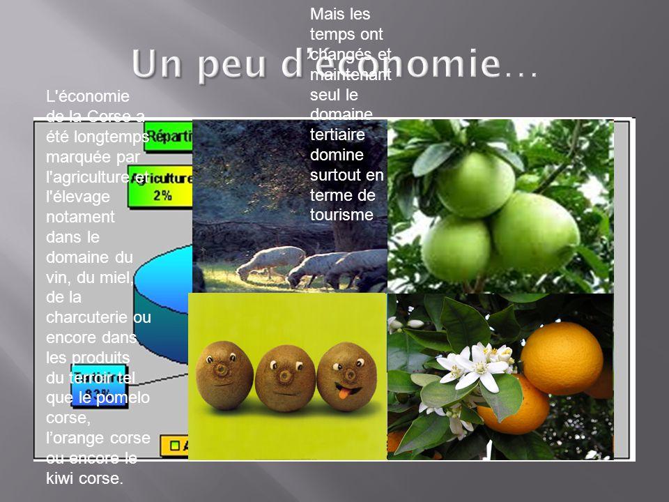 Un peu d'économie… L économie de la Corse a été longtemps marquée par l agriculture et l élevage notament dans le domaine du vin, du miel, de la charcuterie ou encore dans les produits du terroir tel que le pomelo corse, l'orange corse ou encore le kiwi corse.