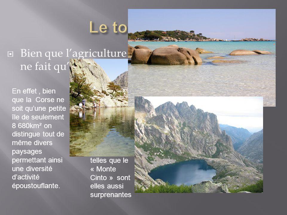  Bien que l'agriculture Corse se perd, le tourisme, lui ne fait qu'empirer d'année en année… En effet, bien que la Corse ne soit qu'une petite île de seulement 8 680km² on distingue tout de même divers paysages permettant ainsi une diversité d'activité époustouflante.