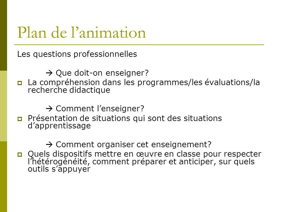 Plan de l'animation Les questions professionnelles  Que doit-on enseigner?  La compréhension dans les programmes/les évaluations/la recherche didact