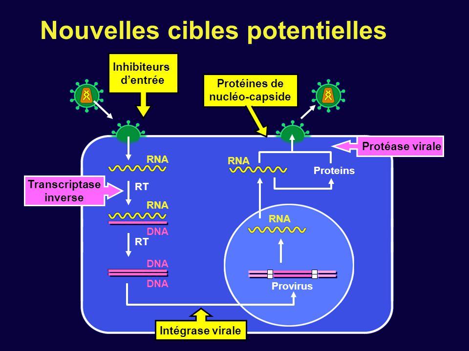 RT Provirus Proteins RNA DNA RNA DNA RT Protéase virale Transcriptase inverse Intégrase virale RNA Inhibiteurs d'entrée DNA Protéines de nucléo-capsid