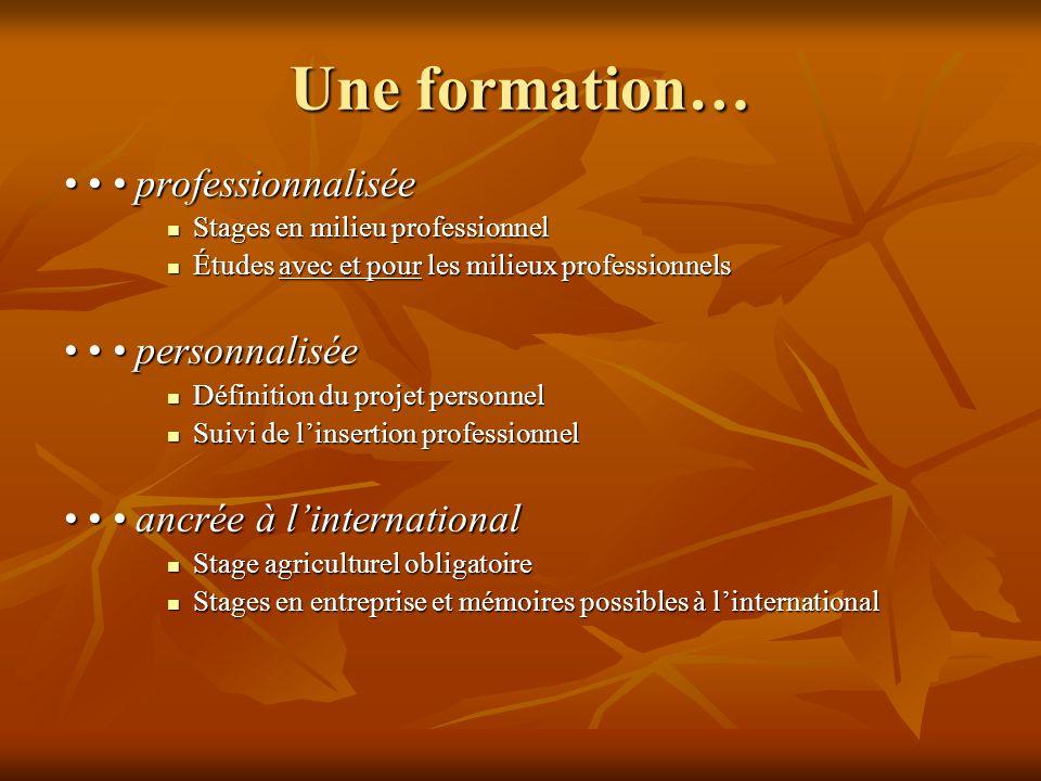Une formation… • • • professionnalisée  Stages en milieu professionnel  Études avec et pour les milieux professionnels • • • personnalisée  Définit
