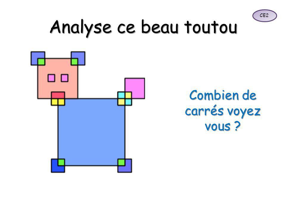 Analyse ce beau toutou Combien de carrés voyez vous ? CE2