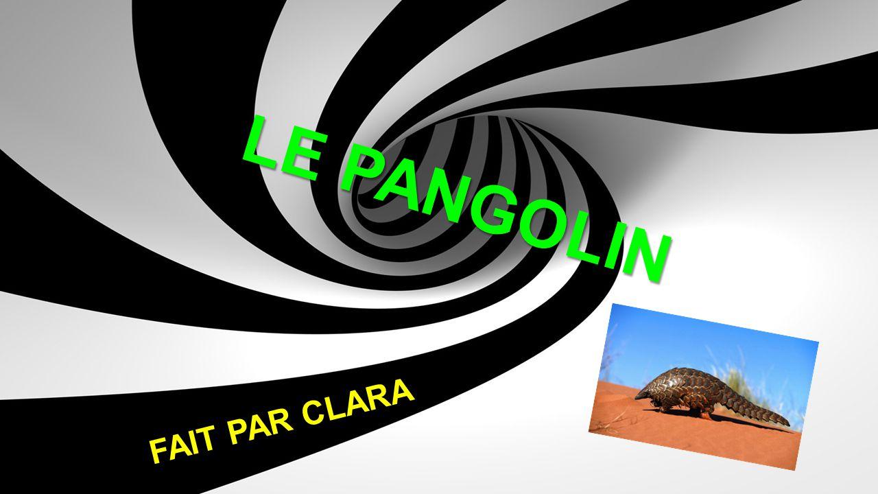 LE PANGOLIN FAIT PAR CLARA