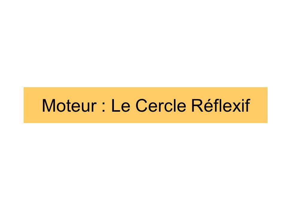 Atelier n°2 : Déroulement 1.Nommez un rapporteur.