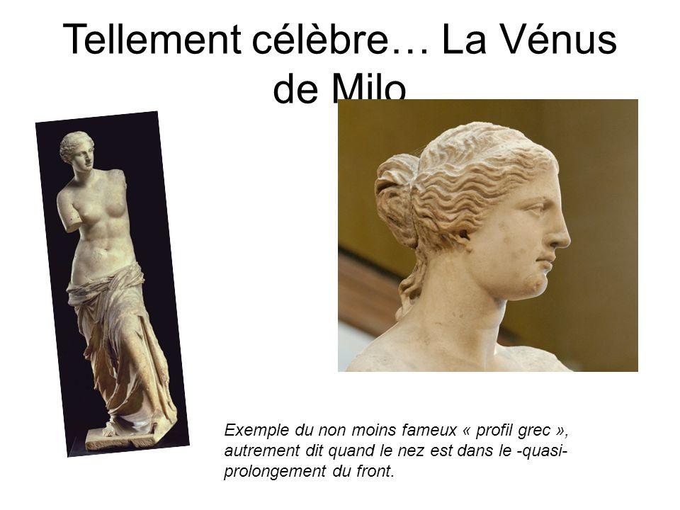 Tellement célèbre… La Vénus de Milo Exemple du non moins fameux « profil grec », autrement dit quand le nez est dans le -quasi- prolongement du front.
