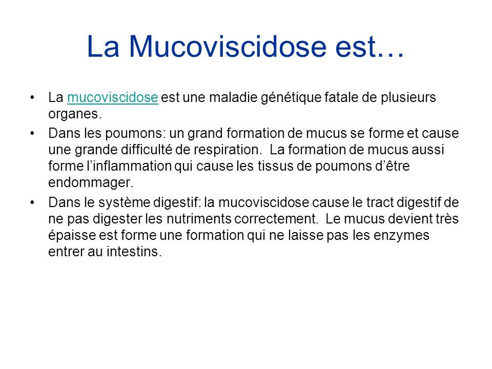La Mucoviscidose est… •La mucoviscidose est une maladie génétique fatale de plusieurs organes.mucoviscidose •Dans les poumons: un grand formation de m