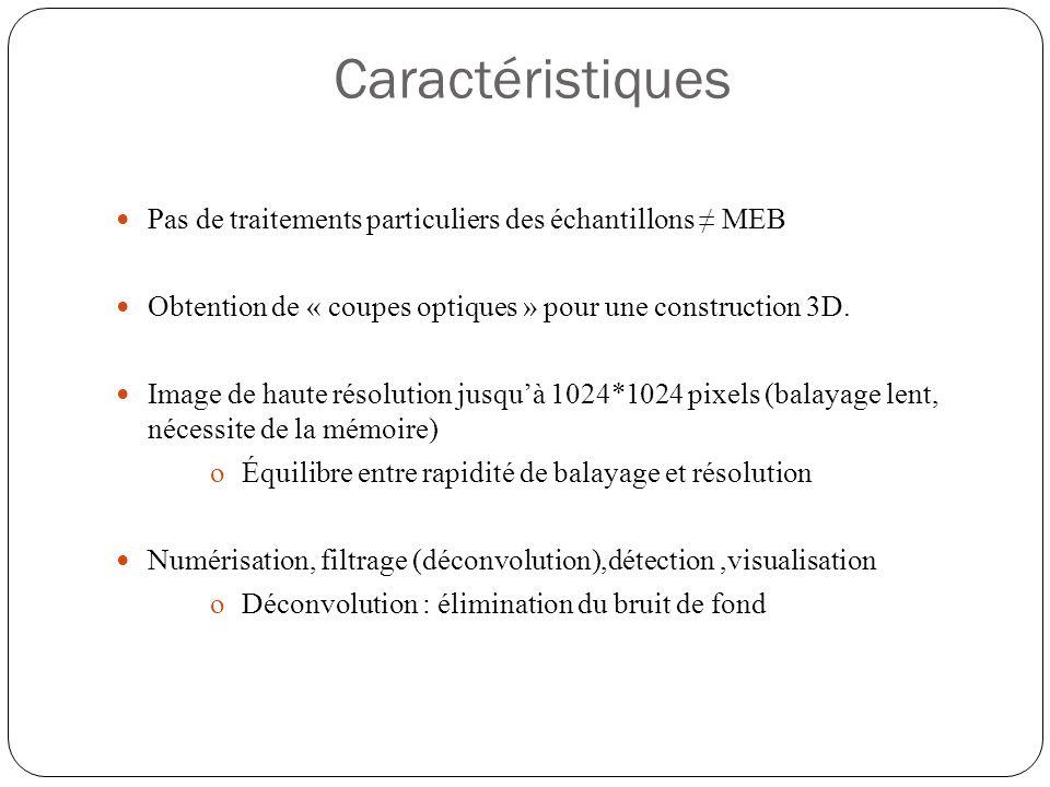 Caractéristiques  Pas de traitements particuliers des échantillons ≠ MEB  Obtention de « coupes optiques » pour une construction 3D.
