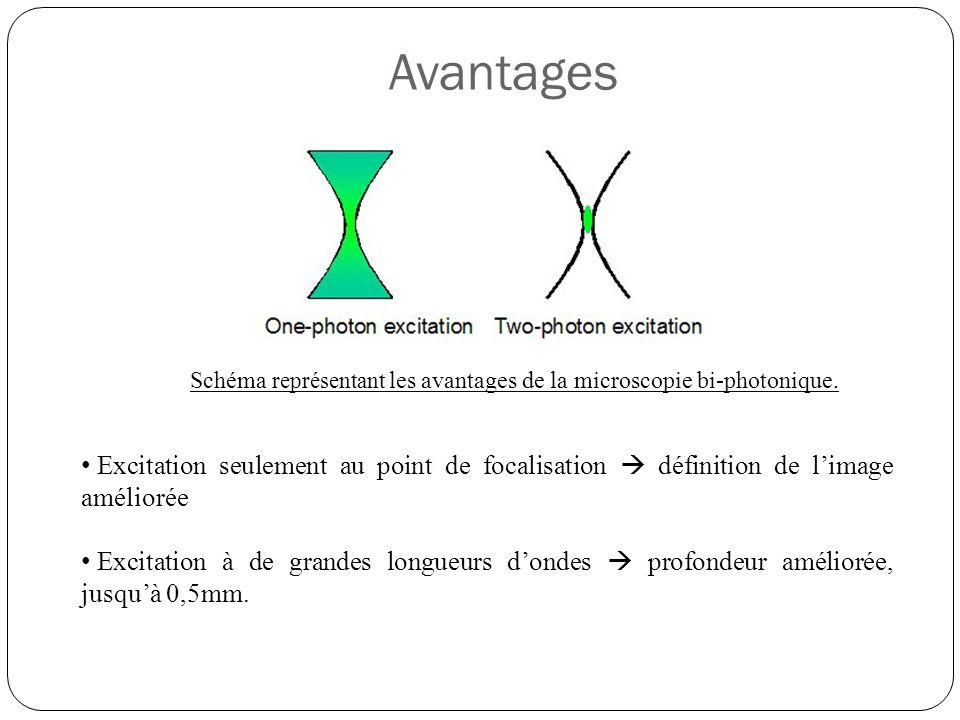 Avantages Schéma représentant les avantages de la microscopie bi-photonique.