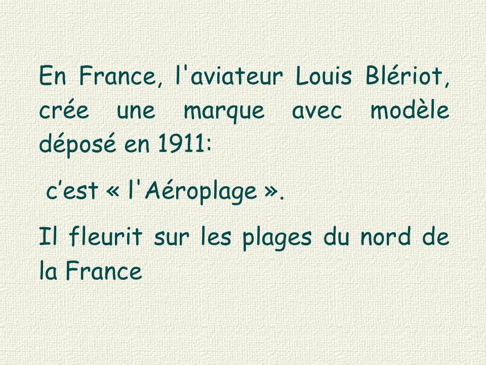 En France, l aviateur Louis Blériot, crée une marque avec modèle déposé en 1911: c'est « l Aéroplage ».