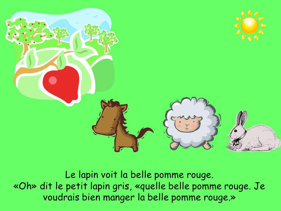 «C'est qui?» dit le petit lapin gris.«C'est moi, le petit mouton blanc.