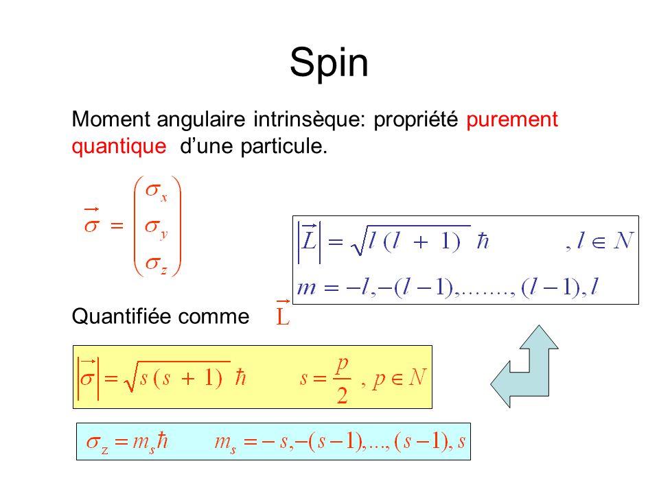 Spin Moment angulaire intrinsèque: propriété purement quantique d'une particule. Quantifiée comme