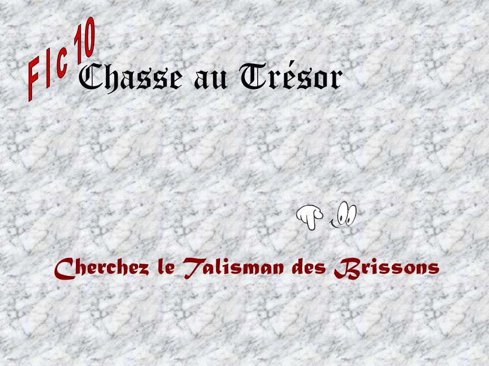 Chasse au Trésor Cherchez le Talisman des Brissons