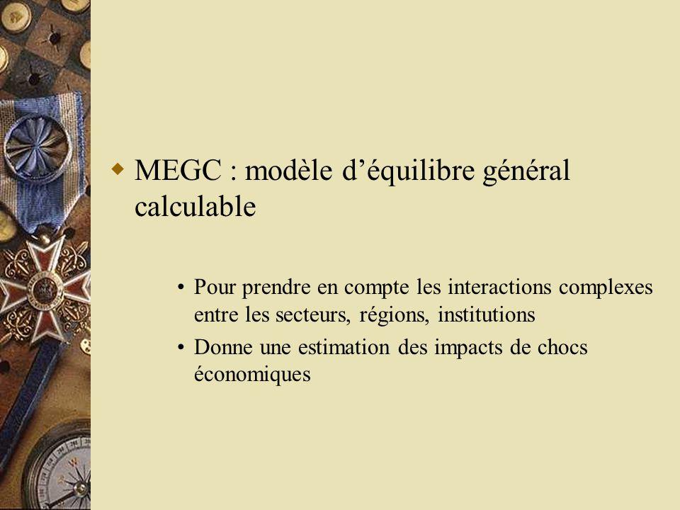  MEGC : modèle d'équilibre général calculable •Pour prendre en compte les interactions complexes entre les secteurs, régions, institutions •Donne une