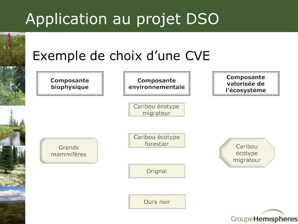 Application au projet DSO Exemple de choix d'une CVE