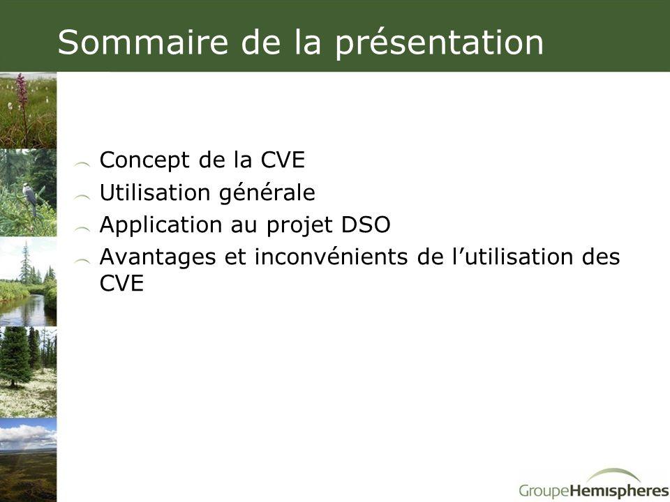 Sommaire de la présentation Concept de la CVE Utilisation générale Application au projet DSO Avantages et inconvénients de l'utilisation des CVE