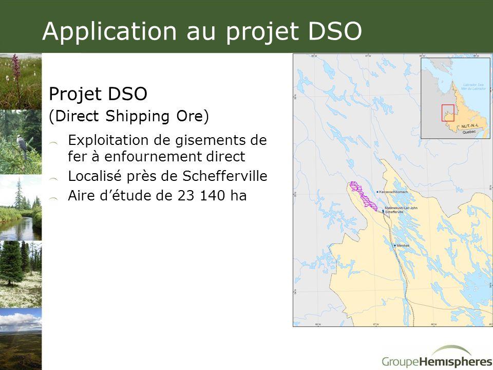 Projet DSO (Direct Shipping Ore) Exploitation de gisements de fer à enfournement direct Localisé près de Schefferville Aire d'étude de 23 140 ha Appli