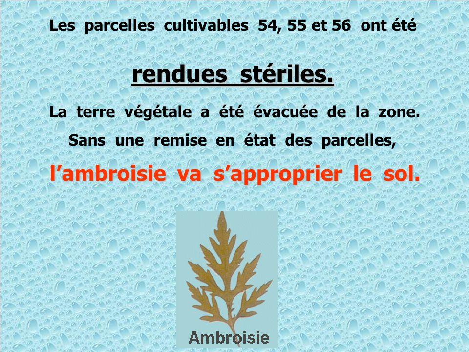 Les parcelles cultivables 54, 55 et 56 ont été rendues stériles.